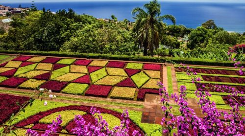 Madeira Luxury Wine Tour